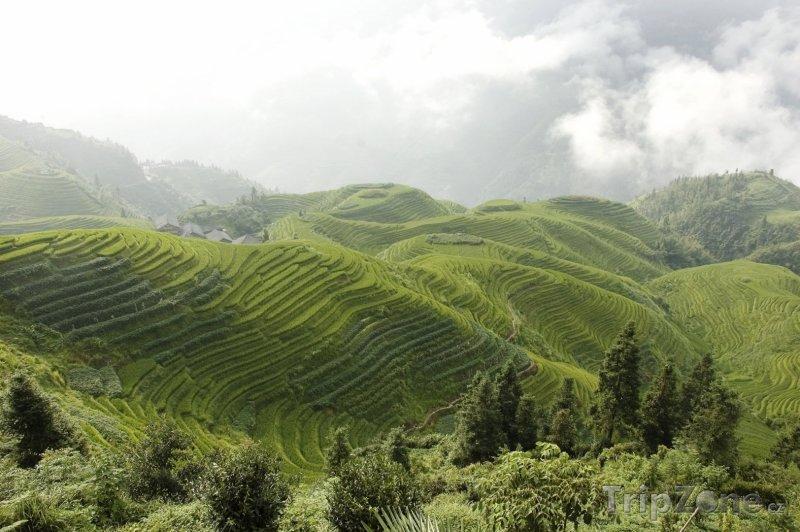 Fotka, Foto Longsheng - rýžové terasy (Čína)