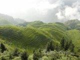 Longsheng - rýžové terasy