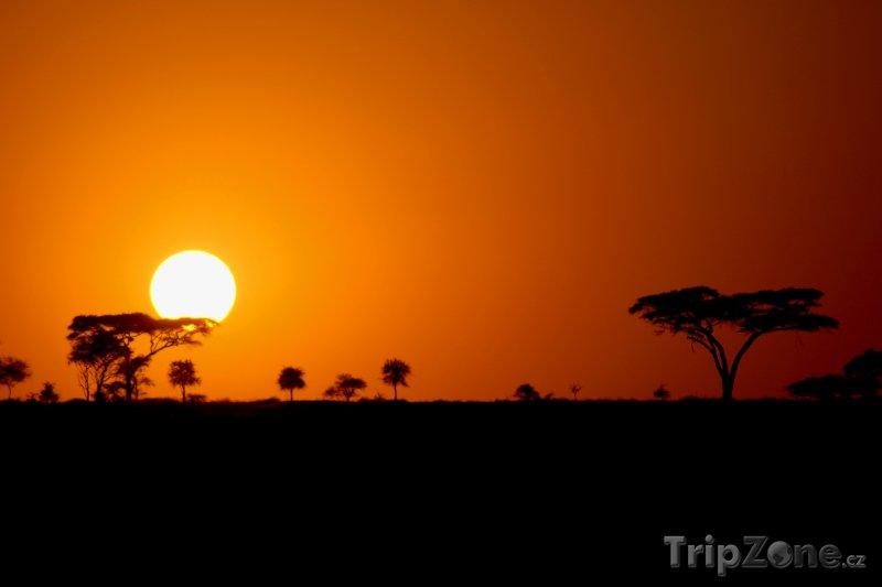 Fotka, Foto Národní park Serengeti při západu Slunce (Tanzanie)