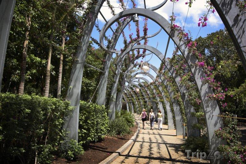 Fotka, Foto Okrasná zahrada v Brisbane (Austrálie)
