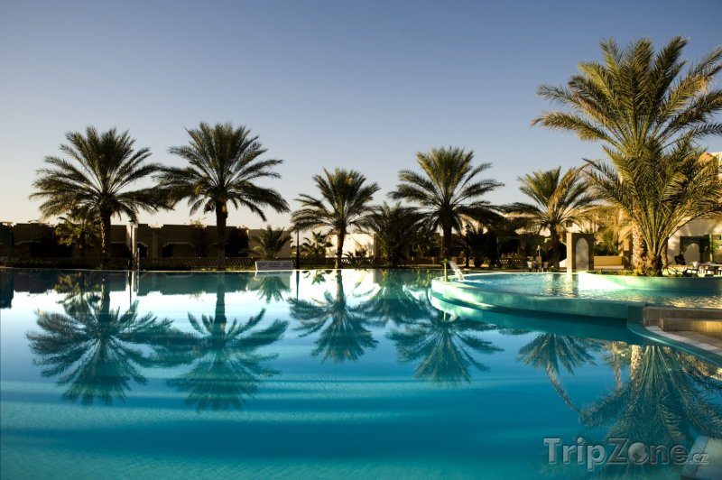 Fotka, Foto Palmy u hotelového bazénu (Tunisko)