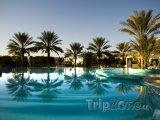 Palmy u hotelového bazénu