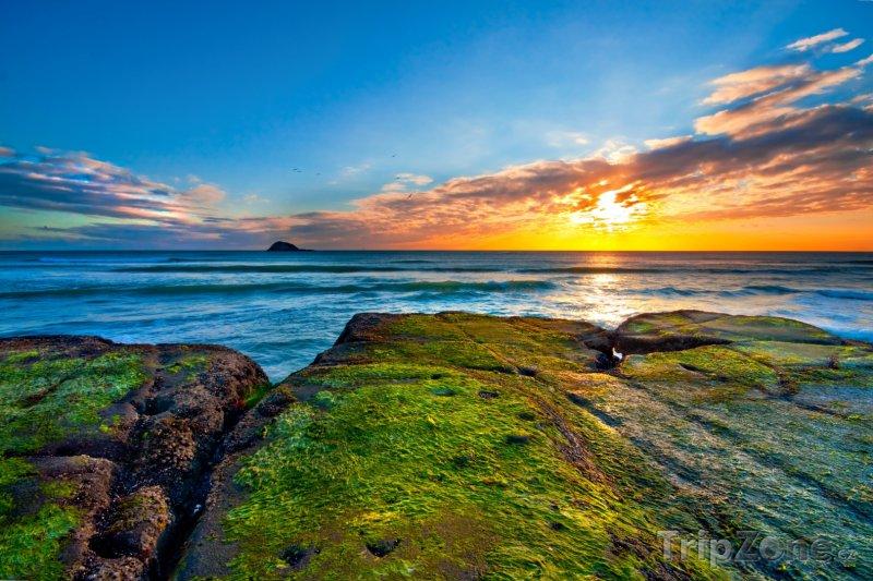 Fotka, Foto Pláž Muriwai v regionu Auckland (Nový Zéland)