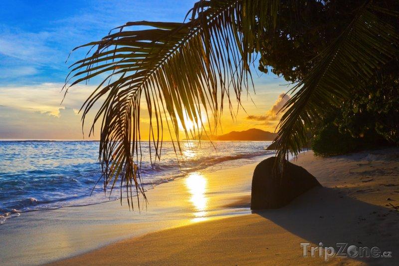 Fotka, Foto Pláž s palmami před západem slunce (Seychely)