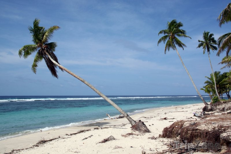 Fotka, Foto Pláž v regionu Atua na ostrově Upolu (Samoa)