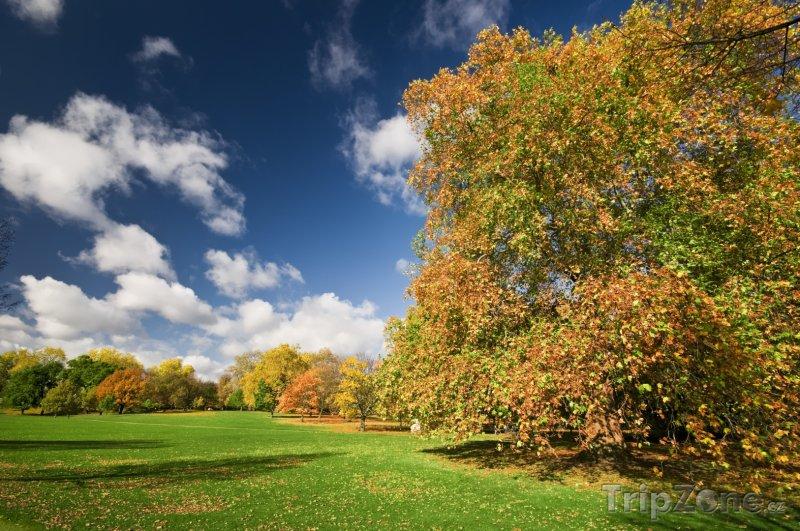 Fotka, Foto Podzim v Hyde Parku (Londýn, Velká Británie)