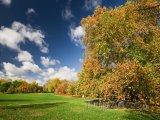 Podzim v Hyde Parku