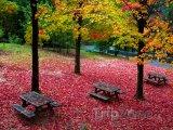 Podzim v Národním parku Peneda-Gerês