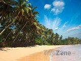 Pohádková pláž s palmami