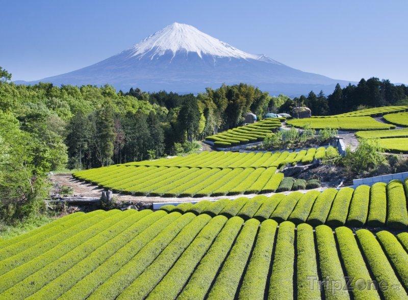 Fotka, Foto Pohled na horu Fudži (Japonsko)