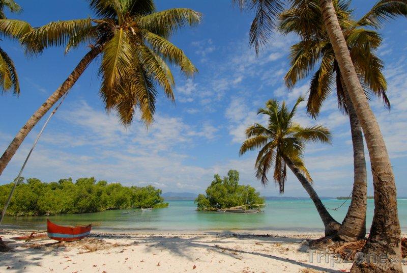 Fotka, Foto Pohodová pláž s palmami (Madagaskar)