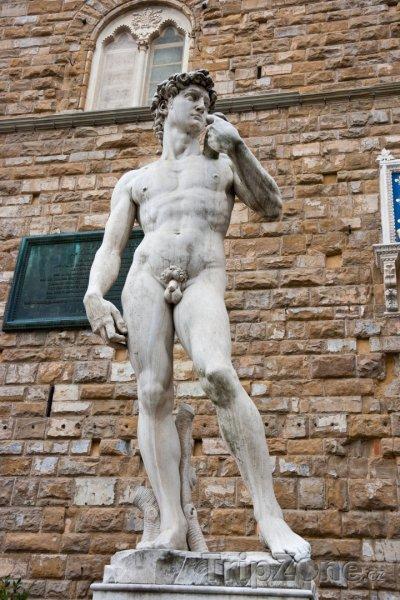Fotka, Foto Replika Michelangelova Davida (Florencie, Itálie)