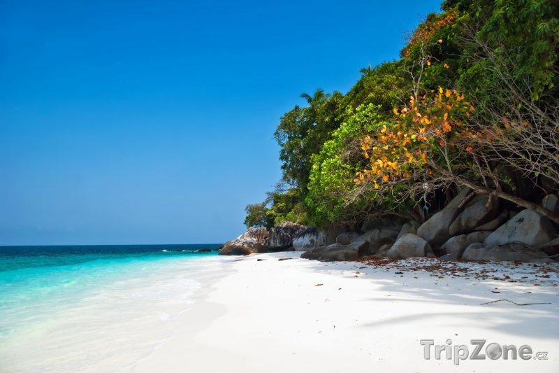 Fotka, Foto Romantická pláž na ostrůvku Tulai (Malajsie)