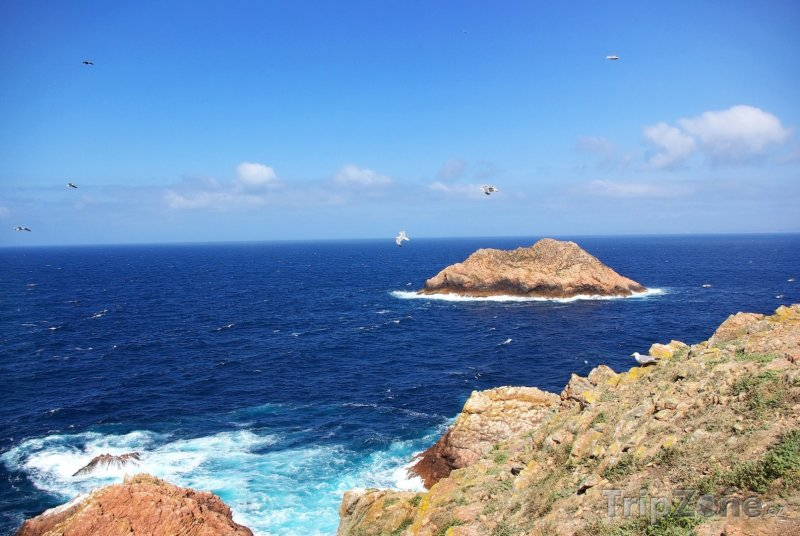 Fotka, Foto Souostroví Berlengas, pobřeží (Portugalsko)