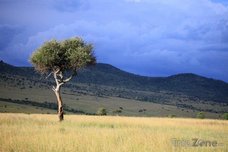 Fotka, Foto Velká příkopová propadlina na území Keni (Keňa)