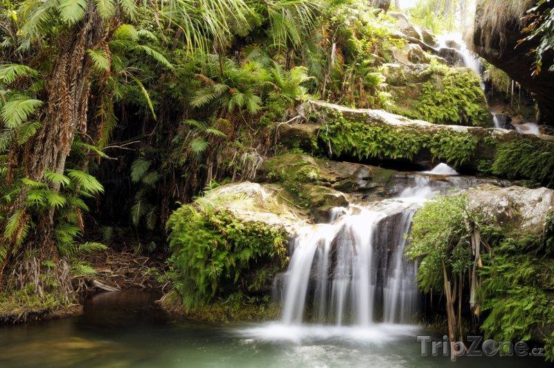 Fotka, Foto Vodopád v deštném pralese (Madagaskar)