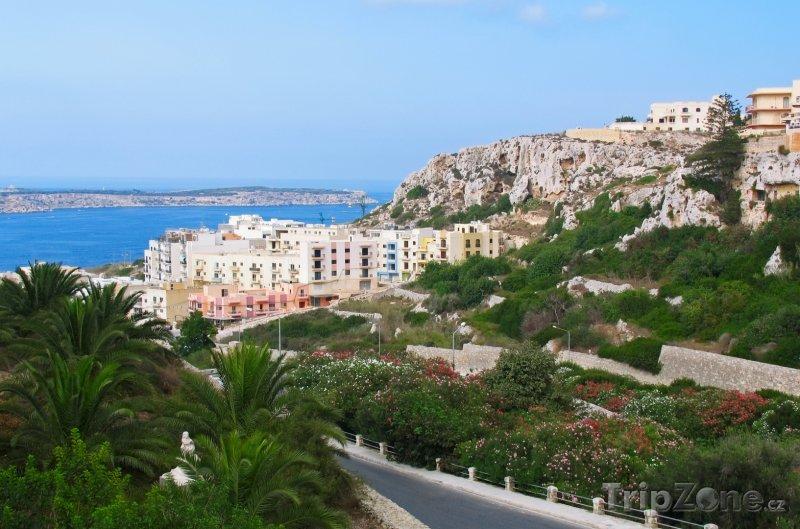 Fotka, Foto Budovy městečka Mellieha (Malta)