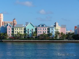 Domy na pobřeží Nassau