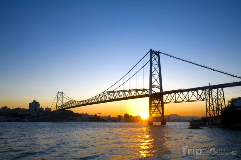 Fotka, Foto Florianópolis - most Hercilio Luz (Brazílie)