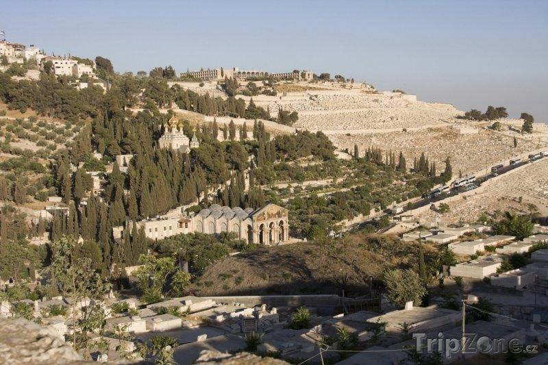 Fotka, Foto Jeruzalém - Olivová hora (Izrael)