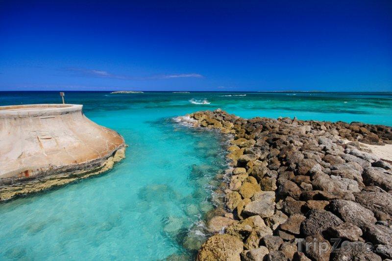 Fotka, Foto Kamenné pobřeží u Paradise Island (Bahamy)
