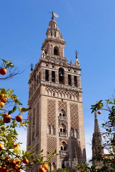 Fotka, Foto Katedrála v Seville (Sevilla, Španělsko)