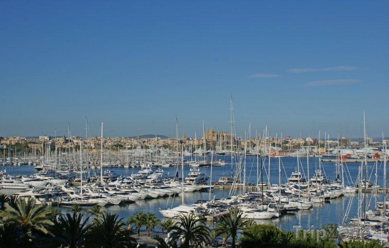 Fotka, Foto Lodě v přístavu (Palma de Mallorca, Španělsko)