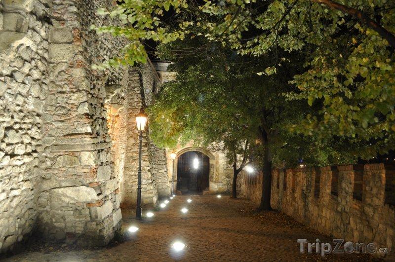 Fotka, Foto Osvětlené zdi bratislavského hradu (Bratislava, Slovensko)