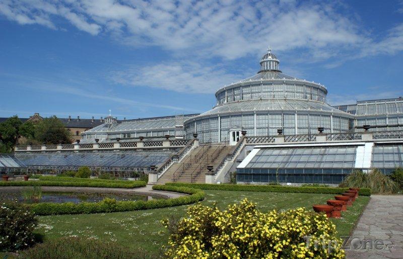 Fotka, Foto Palmový dům v botanické zahradě (Kodaň, Dánsko)