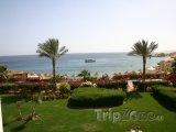 Palmy na zahradě hotelového resortu