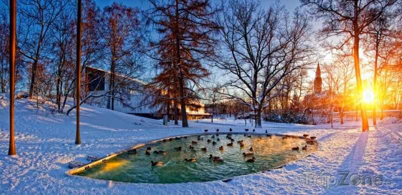 Fotka, Foto Park v zimě (Helsinky, Finsko)