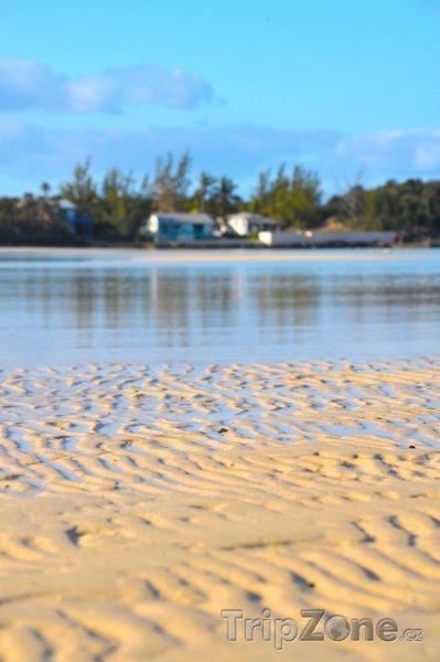 Fotka, Foto Pink Sand Beach na Harbour Island (Bahamy)