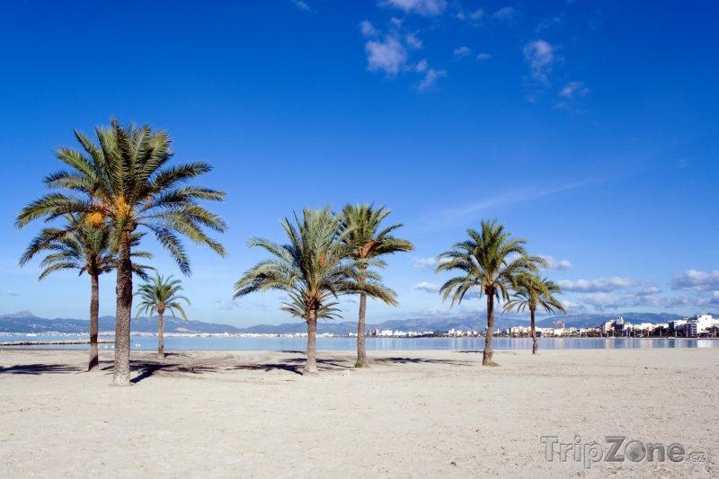Fotka, Foto Pláž Platja de Palma (Palma de Mallorca, Španělsko)