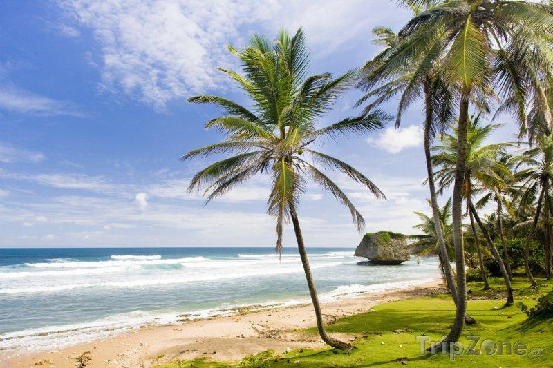 Fotka, Foto Pobřeží Saint Joseph Batsheba (Barbados)