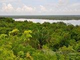 Pohled na deštný prales v Belize