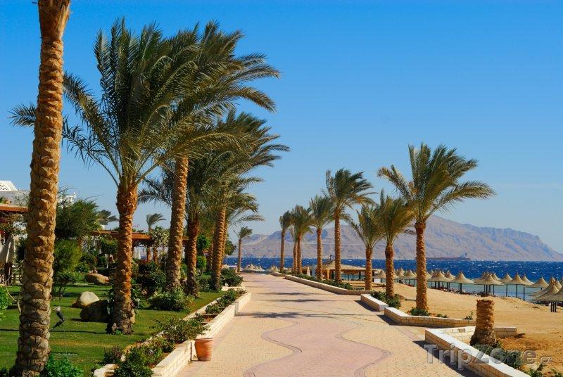 Fotka, Foto Promenáda podél pláže (Sharm El Sheikh, Egypt)