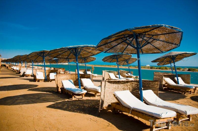 Fotka, Foto Slunečníky a lehátka na pláži rezortu El Gouna (Východní pobřeží, Egypt)