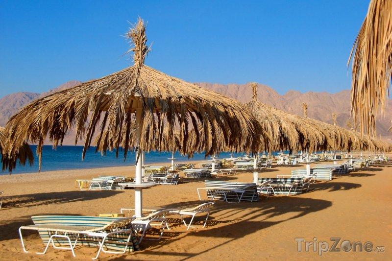 Fotka, Foto Slunečníky a lehátka na pláži rezortu Nuweiba (Sinaj, Egypt)