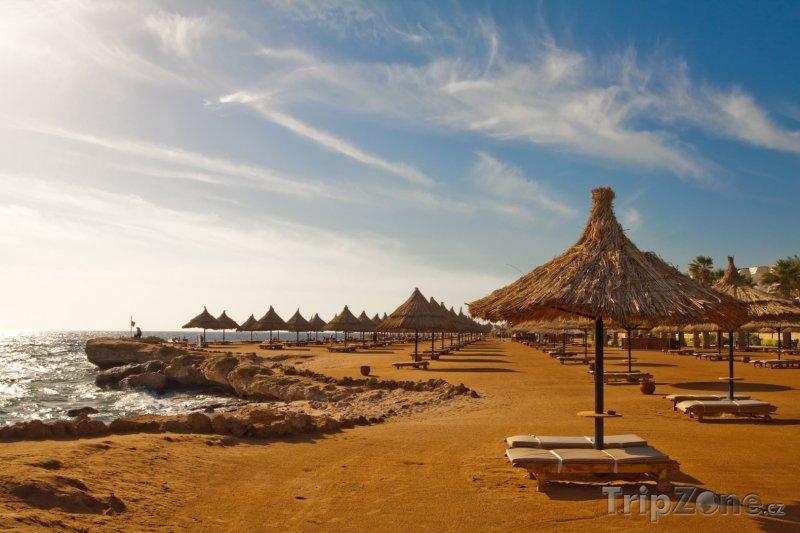 Fotka, Foto Slunečníky na pláži (Sharm El Sheikh, Egypt)