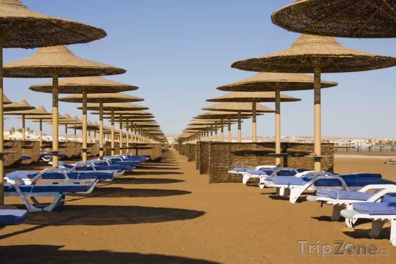 Fotka, Foto Slunenčíky a lehátka na pláži (Hurghada, Egypt)