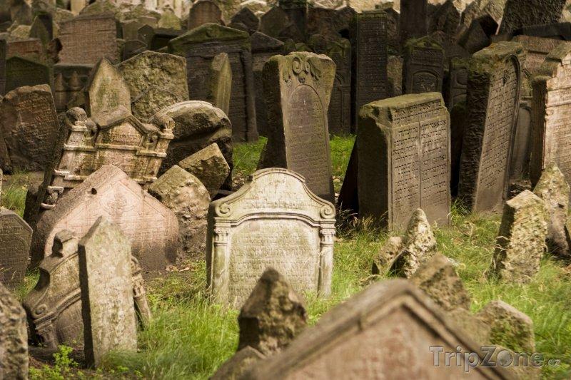 Fotka foto starý židovský hřbitov v praze praha česká