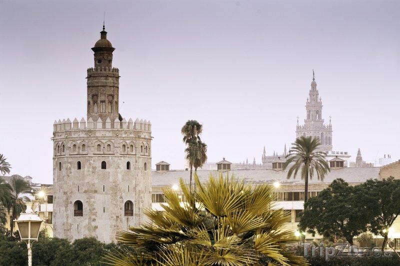 Fotka, Foto Věž Torre del Oro (Sevilla, Španělsko)