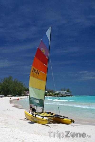 Fotka, Foto Windsurf na pláži v Christ Church (Barbados)