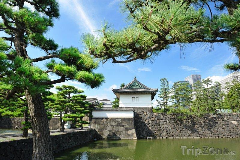 Fotka, Foto Zahrady císařského paláce (Tokio, Japonsko)