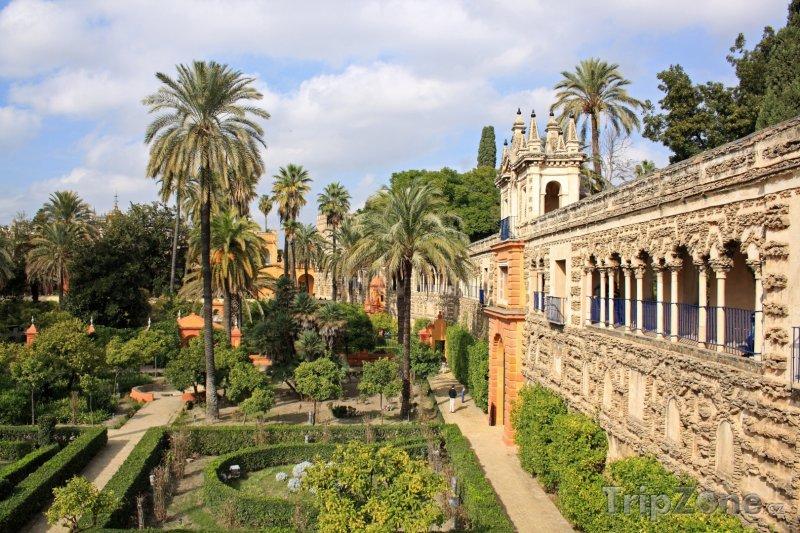 Fotka, Foto Zahrady u paláce Alcazar (Sevilla, Španělsko)