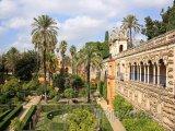 Zahrady u paláce Alcazar