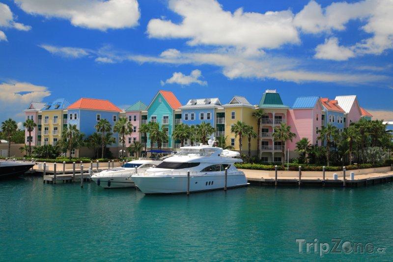 Fotka, Foto Zakotvené jachty u Paradise Island (Bahamy)