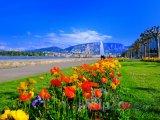 Ženevský park