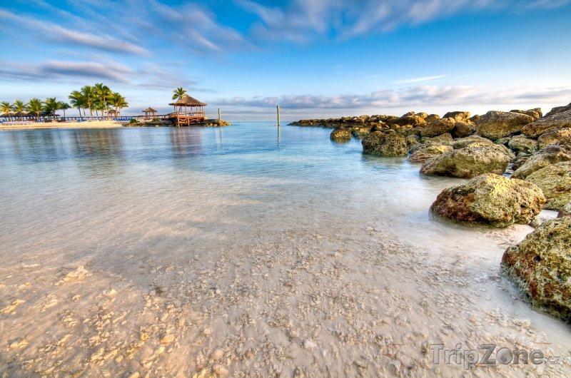 Fotka, Foto Břeh oceánu (Nassau, Bahamy)