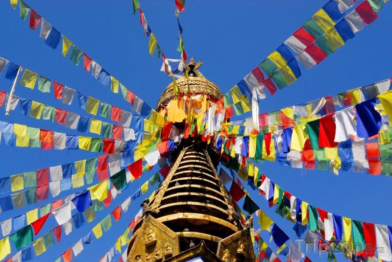 Fotka, Foto Buddhistická stúpa ve městě Káthmándú (Nepál)